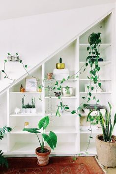 High ceilings and white walls maximize the living space creating an airy atmosphere, perfect for the contrasting greens and earthen tones in this home. Filled with plants in every room it's truly a plant lover's paradise.