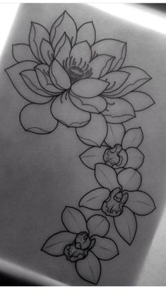Lotus flower/ orchid tattoo...