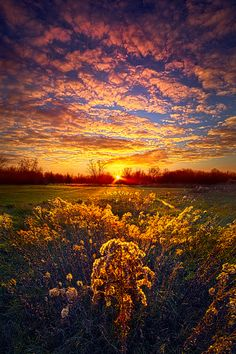 The Love that Lights my Way by Phil Koch - Photo 133681943 - 500px