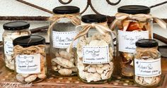 Free Printable Apothecary Labels... to Organize your Seashells! By Slightly Coastal