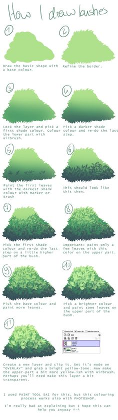 "the-searching-one: "" How I draw bushes Another requested tutorial. I normally use Sai for painting but this process should also work in Photoshop. """