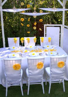 Chair cover&table decoration