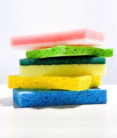 Everything you need to know about how to clean a sponge/dish rag (one of the germiest items in your home!).