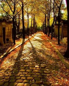 Cobblestone Path, Père Lachaise well known Cemetery, Paris, France. Beautiful World, Beautiful Places, Beautiful Pictures, Beautiful Scenery, Père Lachaise Cemetery, All Nature, Nature Quotes, Fall Photos, Autumn Pictures