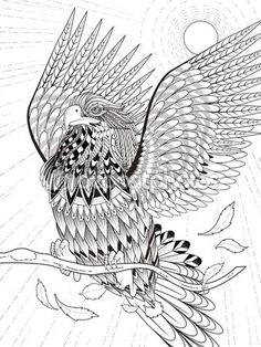 Inspirational Eagle Coloring Book 37 Vector flying eagle coloring