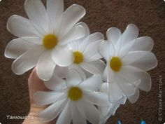 How to Make Daisy Flower <3