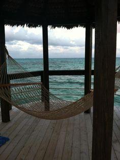Dream backyard.. hammock on the beach