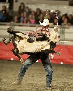 And they call the thing rodeo