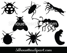Bugs Silhouette Vector Pack
