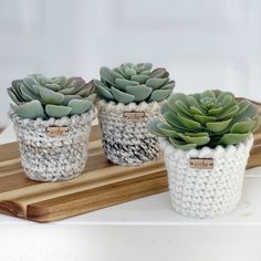 I'm so excited to finally have this crochet pattern written up. The top reminds me of twists or spirals, so I named it The Pirouette Planter. Its the perfect planter to to hold small succulents and plants. Diy Crochet Patterns, Crochet Projects, Crochet Planter Cover, Wooden Tags, Faux Succulents, Crochet Home, Spring Crafts, Planters, Diy Crafts