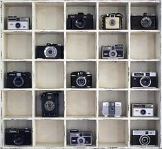 Vintage Camera collection- Selena this looks like something you should do! :)
