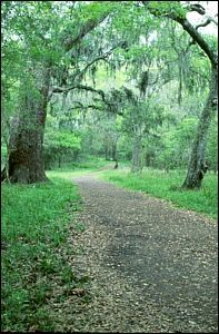 Brazos Bend State Park - Needville, TX - Fort Bend County (Close to Houston)