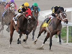 Oxbow in Lecomte, Silverbulletday is 'Magic' January 19, 2013--Derby trail