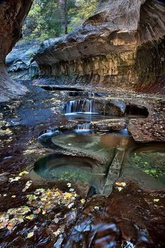 Zion National Park, near Springdale, Utah, USA