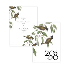 Svarthuvad honungsfågel – Save The Date Save The Date, Place Cards, Dating, Place Card Holders, Paper, Products, Dekoration, Quotes