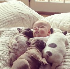 The 11 Most Adorable Pictures Of A Baby Covered In French Bulldog Puppies Ever Taken Omg cuteness overload! So Cute Baby, Cute Kids, Adorable Babies, I Love Dogs, Puppy Love, Nice Dogs, Cute Baby Animals, Funny Animals, Funny Dogs