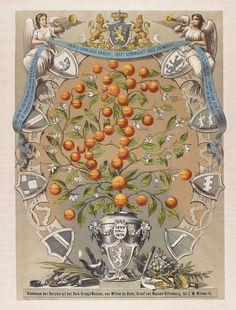 Stamboom der vorsten uit het huis Oranje-Nassau, van Willem de Oude, graaf van Nassau-Dillenburg, tot Z.M. Willem III | if then is now