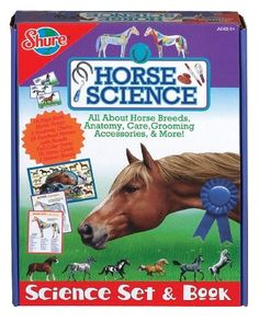 Equine Studies understanding college & its subjects available