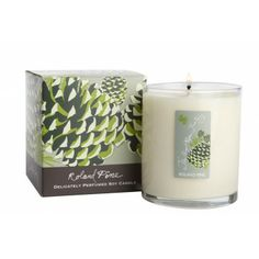 The best pine scented candle EVER!