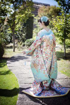 くくる(CUCURU) 加賀調懸崖椿菊