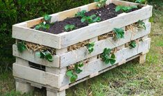 Video showing how to break down a wood pallet and transform it into a strawberry planter. Also includes links to how to plant and maintain the planter.