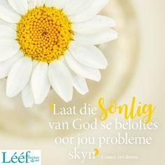 Corrie Ten Boom, Hart, Afrikaans, Dear God, Kos, Quotes, English, Inspiration, Ideas