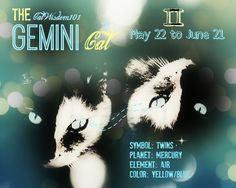 Astrology for cats. Astro-kitty Gemini cat art. Find out if your cat is Gemini.