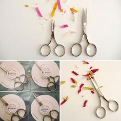 scissors studio carta