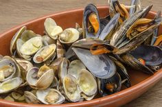 Contagious Cancer Found in Shellfish