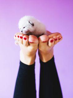 Hornhaut an den Füßen? Keine Panik, wir erklären euch wie ihr sie ganz schnell loswerdet, sie auch in Zukunft reduziert und zusätzlich eure Füße pflegt.