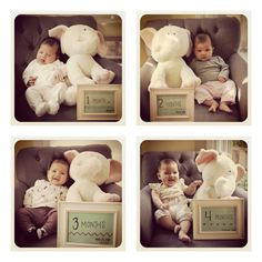 Monthly baby photos with a favorite stuffed animal @Mama Say What?!