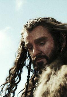 Thorin hair view