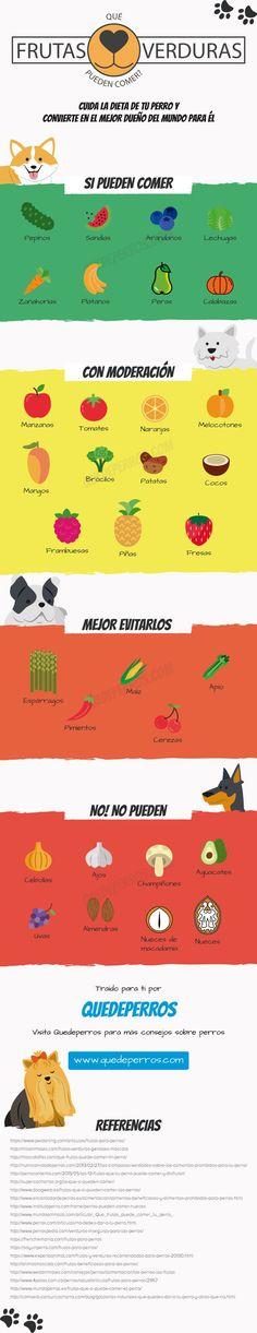 Aprende que #frutas y #verduras pueden comer los #perros. Pues no todas ellas son aptas para su salud.