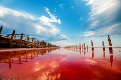 These photos of the Rotten Sea in Crimea by Sergey Anashkevych capture the eerie beauty of its red water. The water has turned red because of a reaction between algae and the excessive saline from its. Amazing Photography, Landscape Photography, Art Photography, Ukraine, Lake Photos, Beautiful Landscapes, Paris Skyline, Cool Photos, Interesting Photos