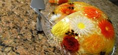 Learn How To Make Gelatin Art Desserts, No Experience Needed. High Quality Gelatin Art Supplies And Tools!
