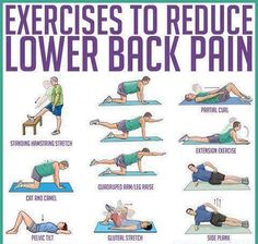 Lower Back Exercises Strengthen Your Spine | Repinned by @GleiberMD