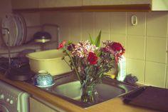 Summer Flowers in Kitchen Sink - Sabina Hannila