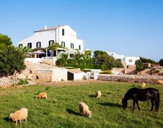Kate Maxwell reports on the best hotels, restaurants, festivals, and beaches in Menorca, Spain. Vincent Spano, Baby Friendly Holidays, Morocco Honeymoon, Menorca Hotels, Spain Culture, Baroque Architecture, Balearic Islands, Cadiz, Spain And Portugal