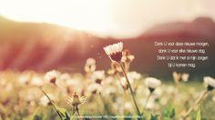 Dank U voor deze nieuwe morgen,dank U voor elke nieuwe dag.Dank U dat ik met al mijn zorgenbij U komen mag. Evangelische Liedbundel 168  #Dankbaarheid  http://www.dagelijksebroodkruimels.nl/evangelische-liedbundel-168/
