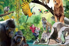 Chessington Zoo & Sea Life Centre