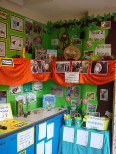 All About Plants - 2nd Grade Science Bulletin Board | *By ...