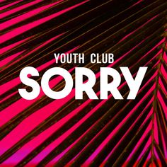 Sorry, a song by Youth Club on Spotify Youth Club, Bands, My Love, Music, Musica, Musik, Band, Muziek, Band Memes
