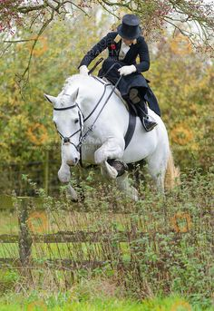 Amy Bryan-Dowell at the Quorn Hunt Opening Meet, The Kennels, Kirby Bellars, October 24, 2014.