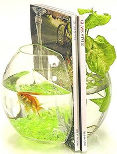 Im just saying....a bookend with a fish so my cat might eat it but I can always buy a fake fish!