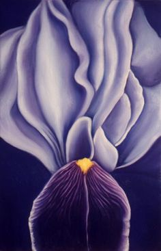 Georgia O& Inspired Purple Iris Painting by Southwest Artist . Georgia O'keeffe, Wisconsin, Georgia O Keeffe Paintings, Purple Iris, Black Iris, Auguste Rodin, Pablo Picasso, American Artists, Flower Art