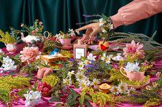 Kuvahaun tulos haulle gucci bloom