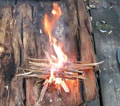 Firelighting Under Some Very Wet Conditions. This is an awesome website about outdoor survival skills.