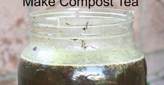 how to make compost tea, best free all natural plant fertilizer