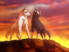45 Best Wolf Drawings Images Wolves Anime Wolf Drawings