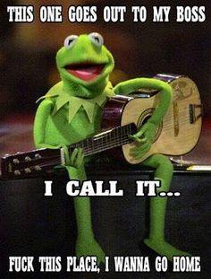 20 Kermit the frog memes Awesome – Fallout Memes Memes Humor, Sarcasm Meme, Job Humor, Haha Funny, Funny Jokes, Funny Stuff, Hilarious Work Memes, Funny Kermit Memes, Sapo Meme